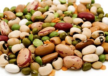 Různé druhy fazolí
