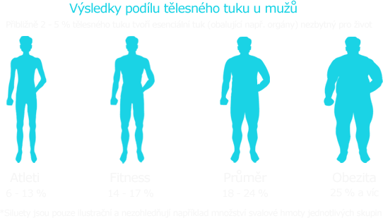 Tělesný tuk výsledky mužů