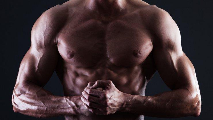 Růst svalů a genetika