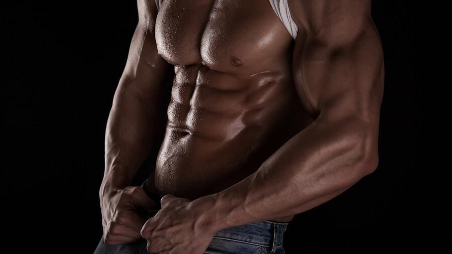 Anatomie břišních svalů