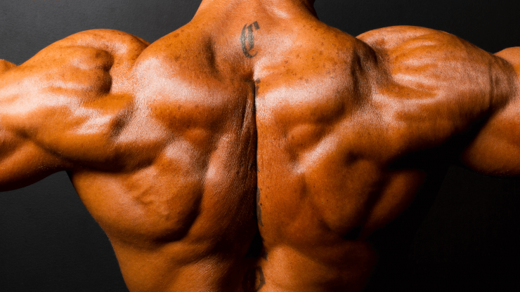 Mužská ramena