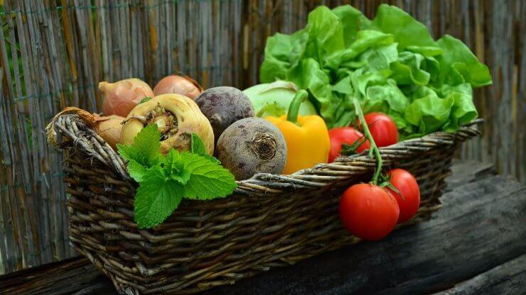 Metody úpravy zeleniny
